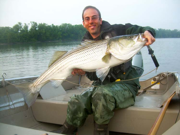 spring striper fishing on the connecticut river on the water