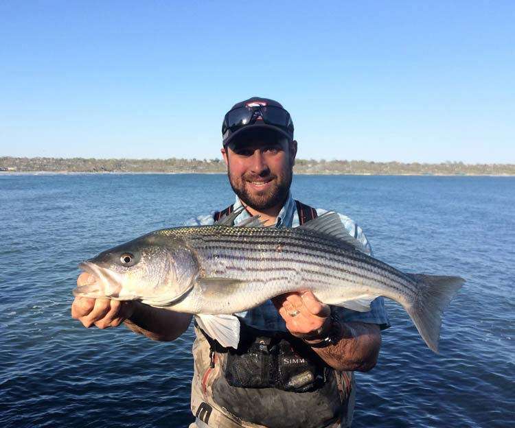 Long Island Herring Fishing Report