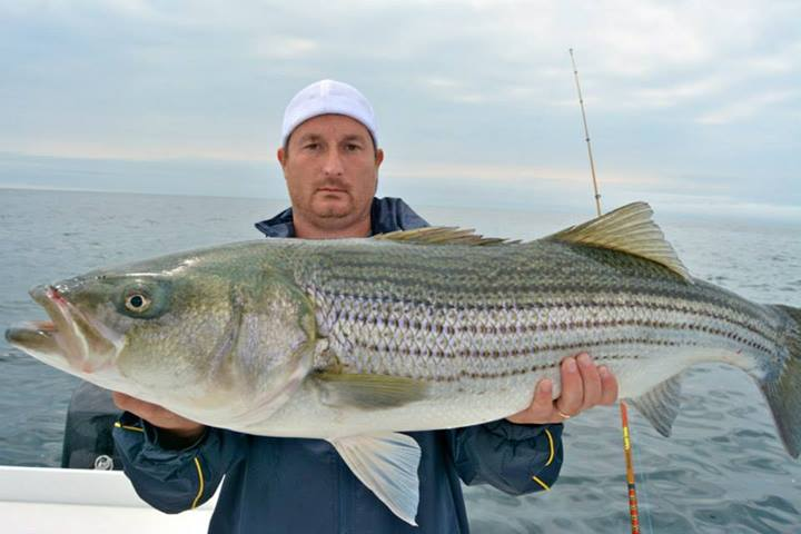 Cape cod buzzards bay fishing report 6 5 2014 on the water for Put in bay fishing charter